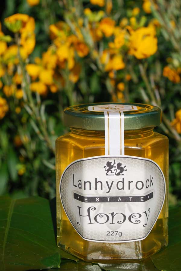 lanhydrock-estate-honey-jar