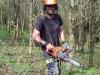 tree-thinning